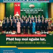 Đón đọc Tạp chí Năng lượng Mới số 19, phát hành thứ Ba ngày 11/8/2020