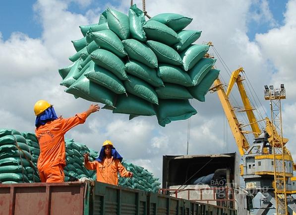 Tin tức kinh tế ngày 18/9: Philippines, Trung Quốc tăng mua gạo Việt Nam
