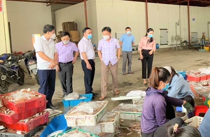 """Tin tức kinh tế ngày 25/9: Nghệ An kêu gọi """"giải cứu"""" 10.000 tấn hải sản"""