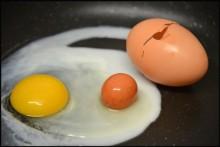"""Kỳ lạ quả trứng """"đẻ"""" ra quả trứng"""