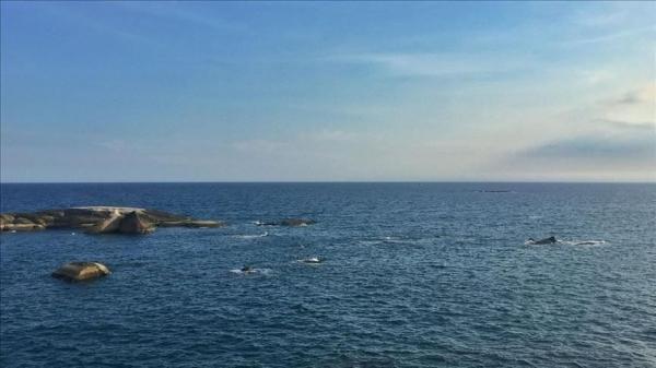 Tổng thống Philippines nhấn mạnh lập trường giải quyết tranh chấp Biển Đông trên cơ sở luật pháp quốc tế