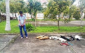 Nhóm bắn trộm chó ở miền Tây bị cảnh sát truy đuổi