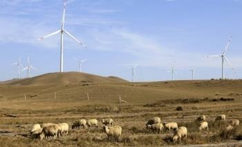Trung Quốc buộc phải đóng cửa 600 nhà máy nhiệt điện than