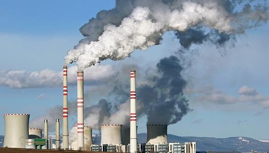 Dự án lưu giữ carbon nhận được sự quan tâm đặc biệt