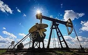 Hiệp hội các công ty sản xuất dầu vừa và nhỏ tại Nga xin giãn hạn nộp thuế