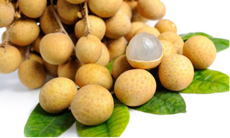 Nhãn lồng Hưng Yên có tiềm năng xuất khẩu lớn