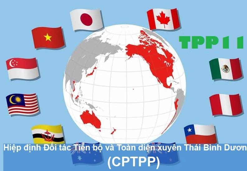 Xuất siêu sang thị trường CPTPP