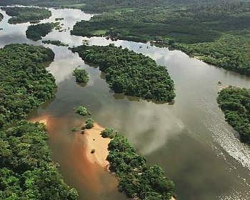 Total và BP rời khu vực Amazon