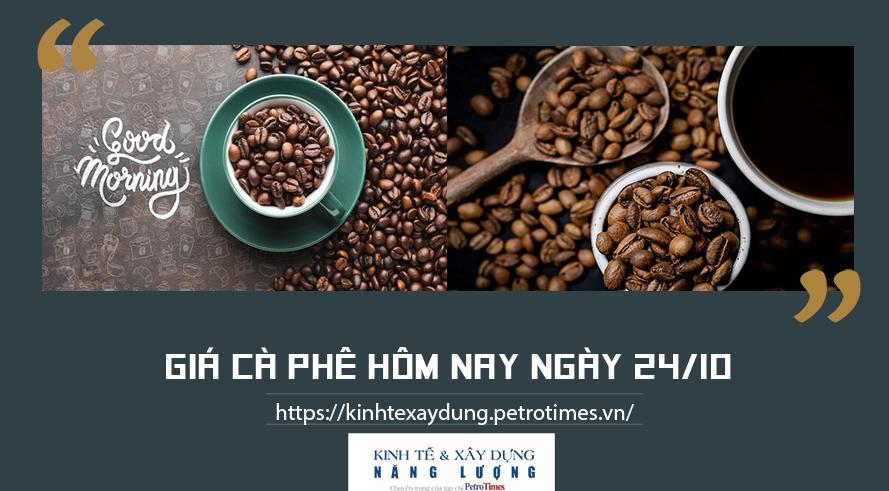 Giá cà phê hôm nay ngày 24/10: Duy trì đà tăng tại các vùng trọng điểm