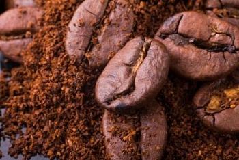 Colombia: Sản lượng cà phê arabica giảm trong khi xuất khẩu tăng trong tháng 11