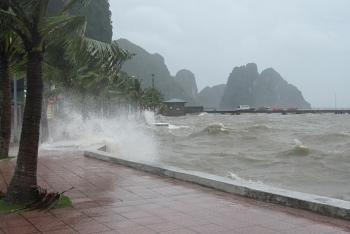 Các địa phương ven biển chủ động ứng phó với áp thấp nhiệt đới