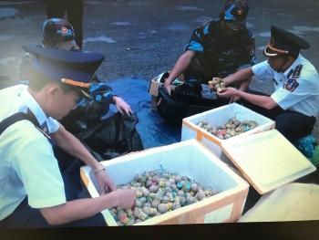 Cảnh sát Biển bắt giữ 30kg pháo nổ