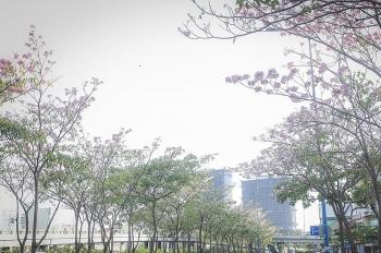 Thời tiết ngày 12/9: Miền Bắc sáng mát dịu