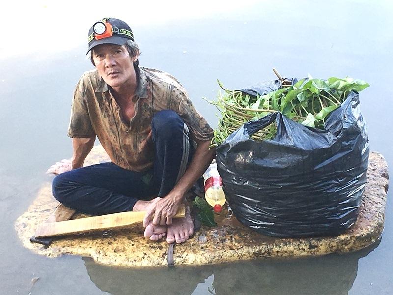 Kiếm sống bằng nghề hái rau muống hoang giữa Sài Gòn hoa lệ