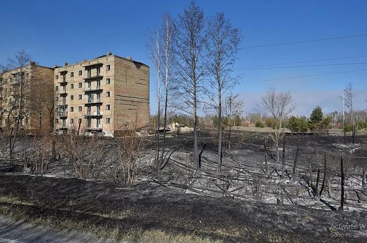 chum anh chay rung tan cong nha may dien hat nhan chernobyl o ukraine
