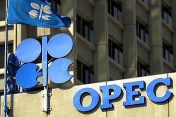OPEC+ không hoảng loạn trước sự bùng nổ các trường hợp nhiễm coronavirus