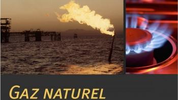 Tranh cãi về chuẩn đầu tư vào khí đốt tự nhiên của EU