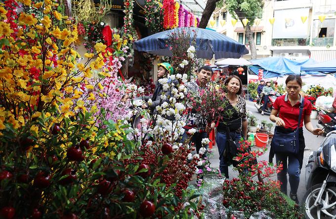 Chợ hoa phố cổ nhộn nhịp trước Tết