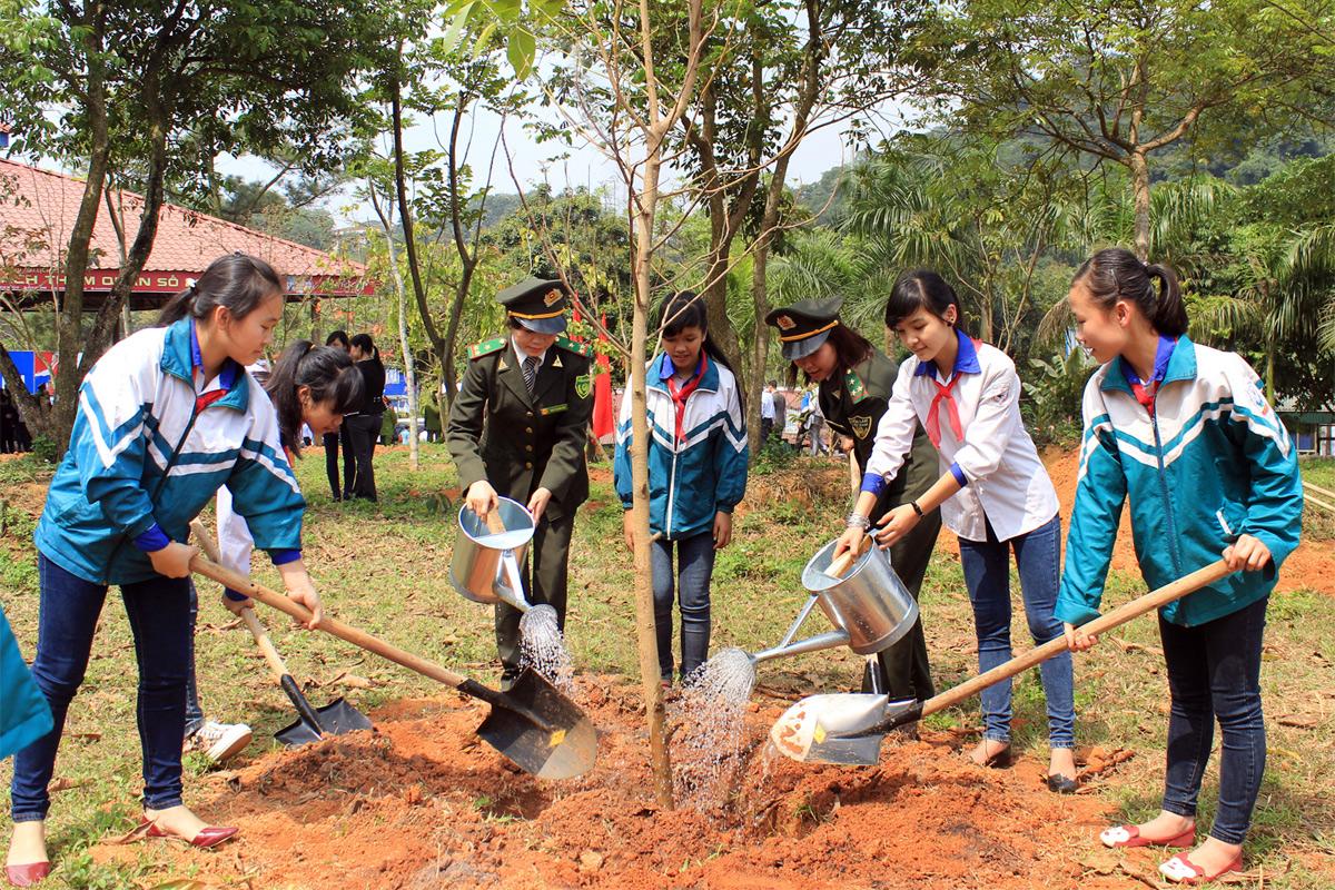 Cả nước chung sức, đồng lòng trồng mới 1 tỷ cây xanh