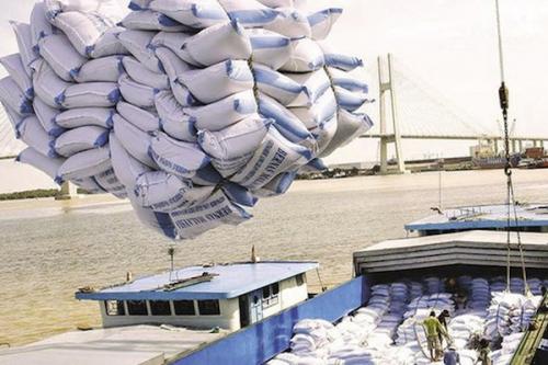 Giá gạo xuất khẩu Việt Nam tiếp tục lập đỉnh mới
