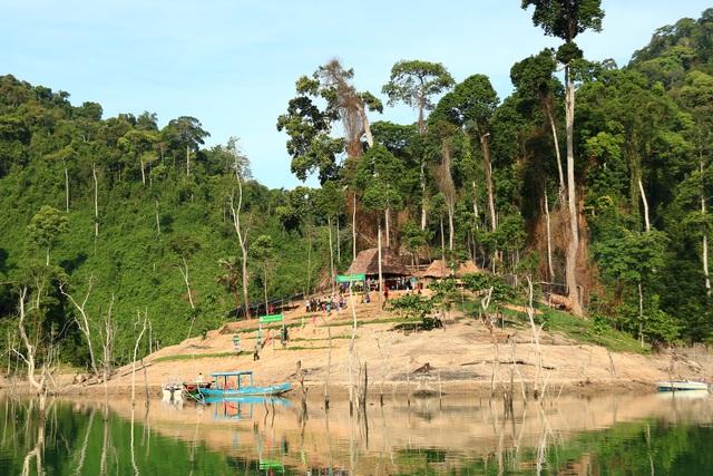 Chủ tịch Quảng Nam yêu cầu đánh sập hầm vàng trái phép - 2