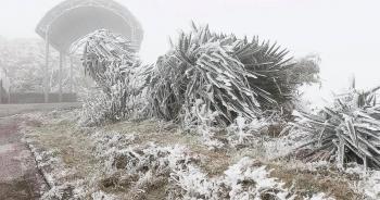 """Sa Pa """"đông cứng"""" trong băng tuyết"""