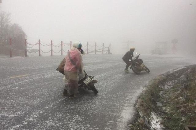 Tuyết rơi dày 20cm, 45 con trâu chết vì giá lạnh - 4