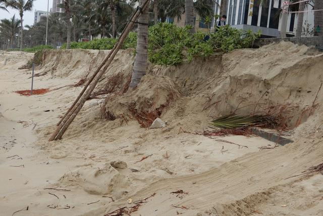 Bờ biển Đà Nẵng sạt lở kinh hoàng, đe dọa nhiều khu nghỉ dưỡng - 5