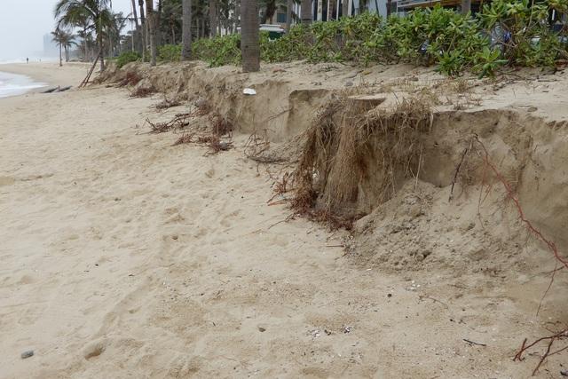 Bờ biển Đà Nẵng sạt lở kinh hoàng, đe dọa nhiều khu nghỉ dưỡng - 2