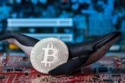"""Bitcoin đảo chiều, cuộc chơi của những """"cá voi"""", """"cá mập""""?"""