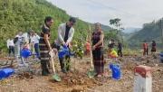 Hiện thực hóa chương trình trồng 1 tỷ cây xanh cho Việt Nam