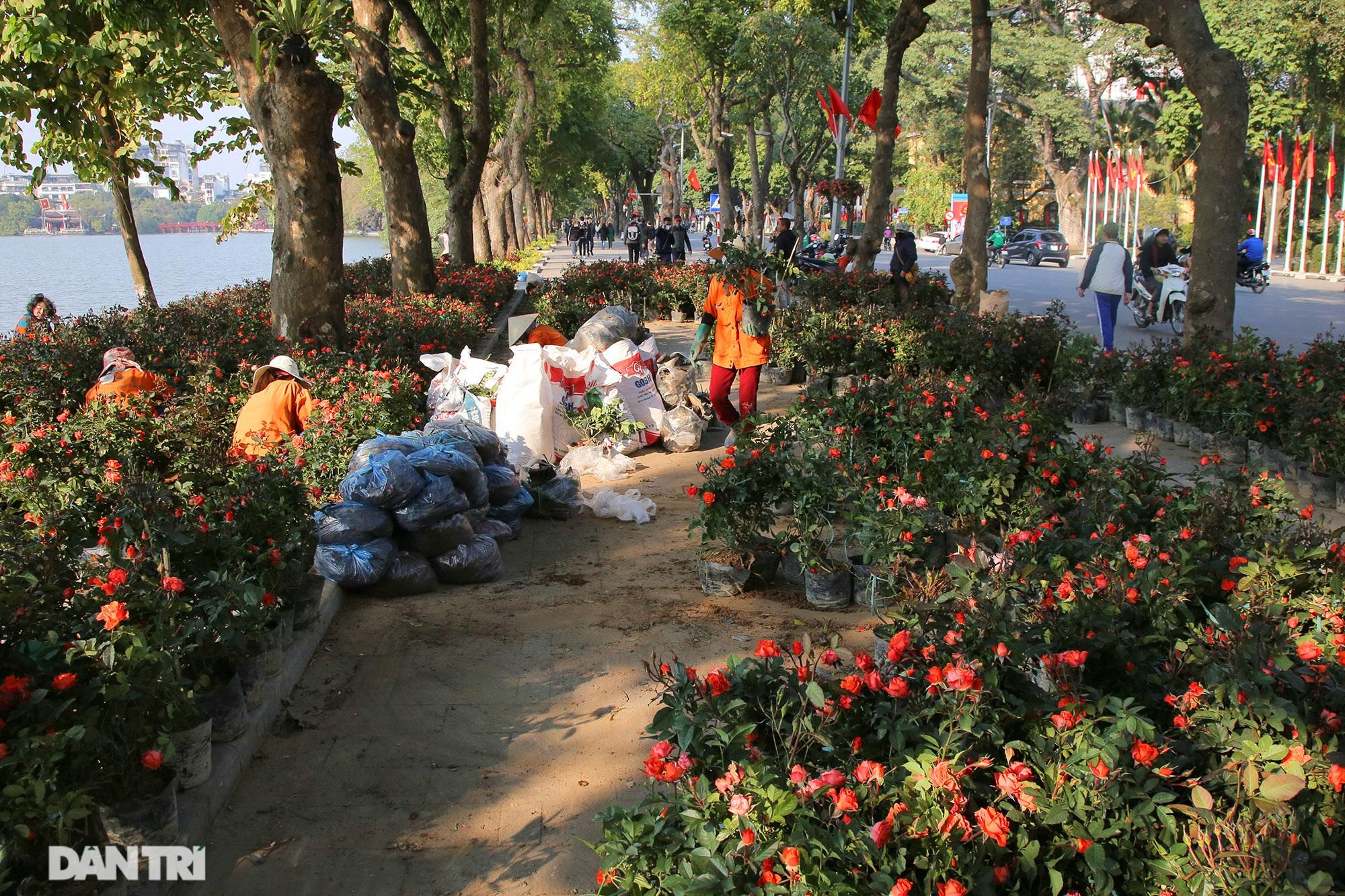 Hồ Gươm trang trí hoa rực rỡ sắc màu chào mừng Đại hội XIII của Đảng - 1