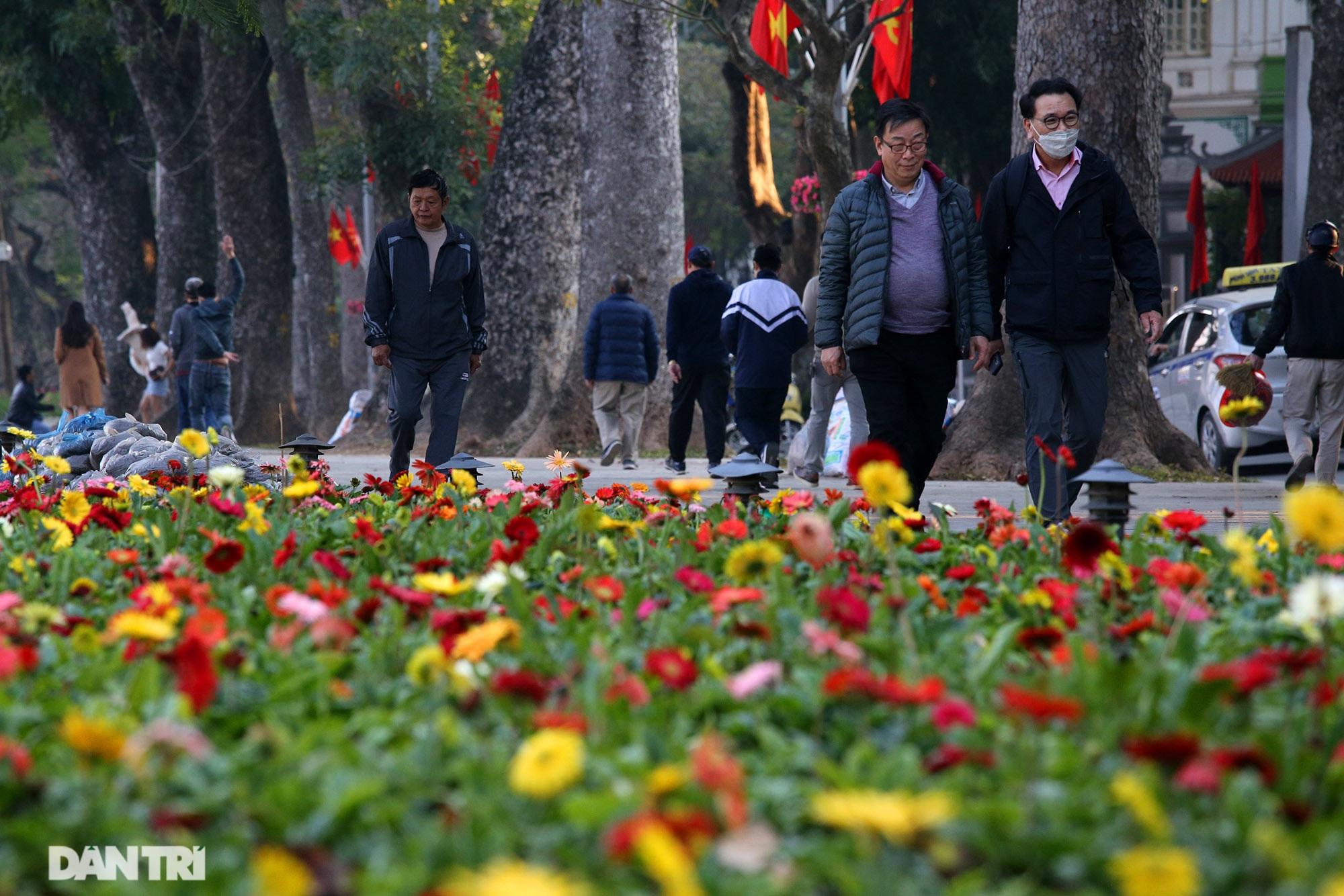 Hồ Gươm trang trí hoa rực rỡ sắc màu chào mừng Đại hội XIII của Đảng - 4
