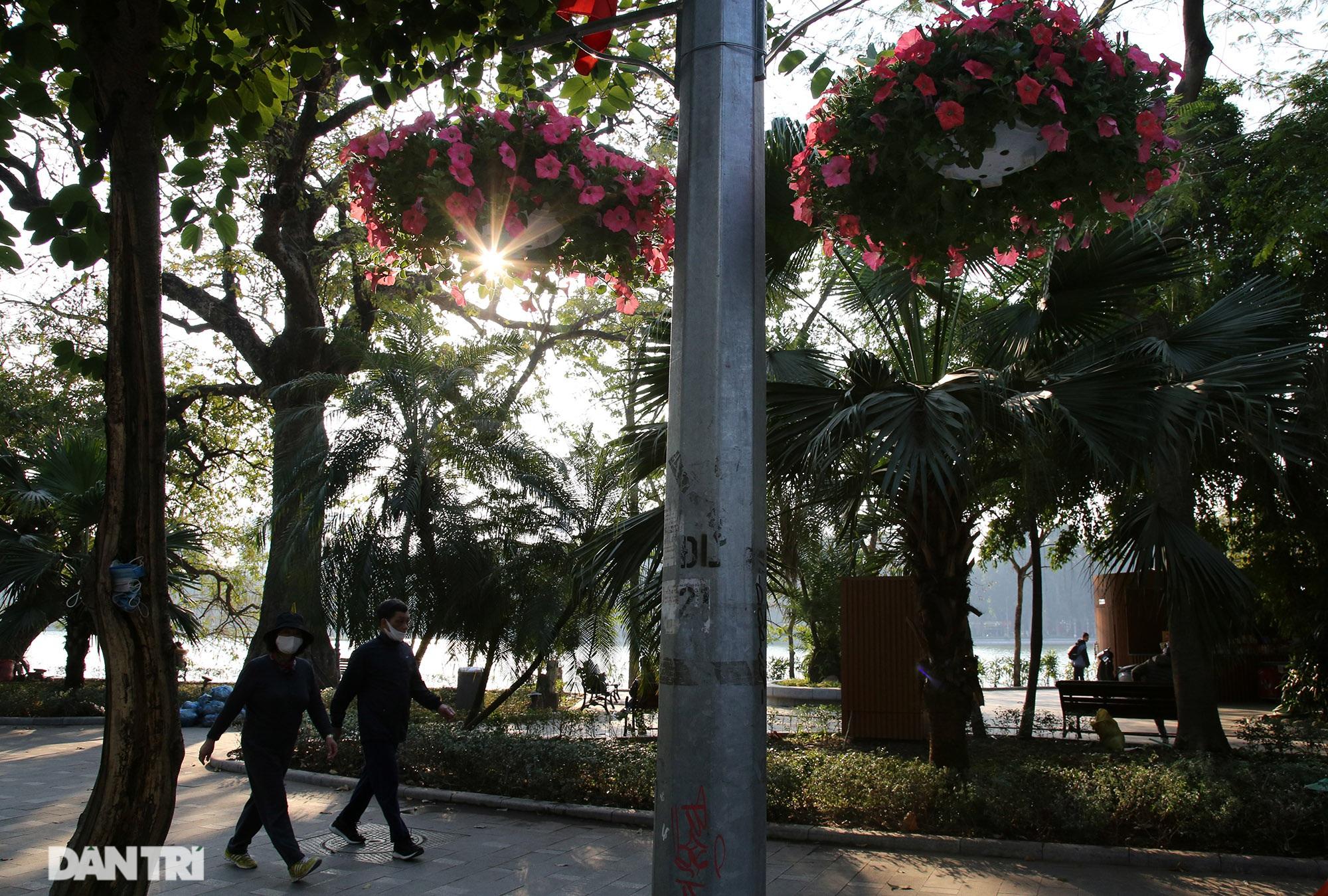 Hồ Gươm trang trí hoa rực rỡ sắc màu chào mừng Đại hội XIII của Đảng - 5