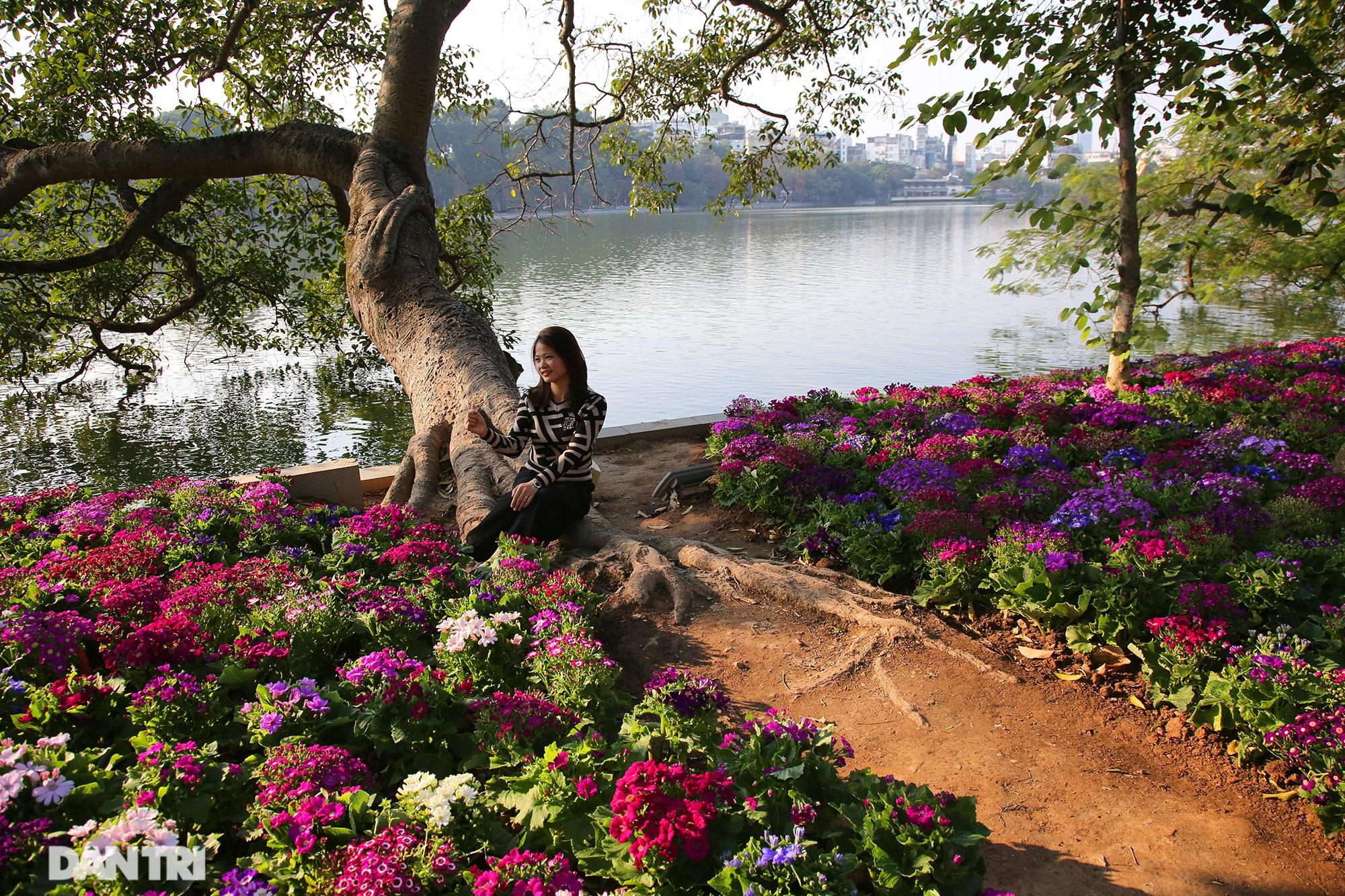 Hồ Gươm trang trí hoa rực rỡ sắc màu chào mừng Đại hội XIII của Đảng - 6