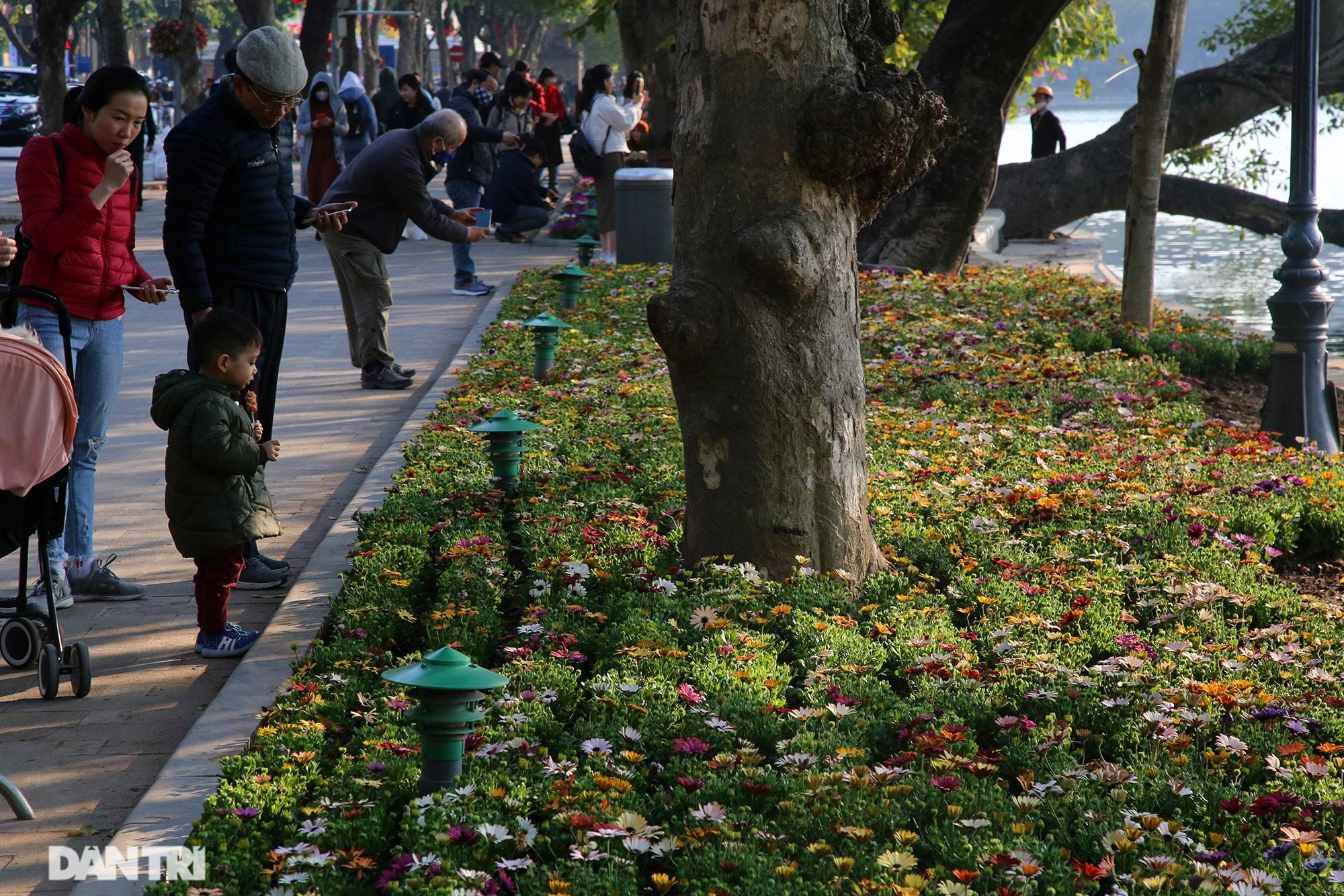 Hồ Gươm trang trí hoa rực rỡ sắc màu chào mừng Đại hội XIII của Đảng - 9