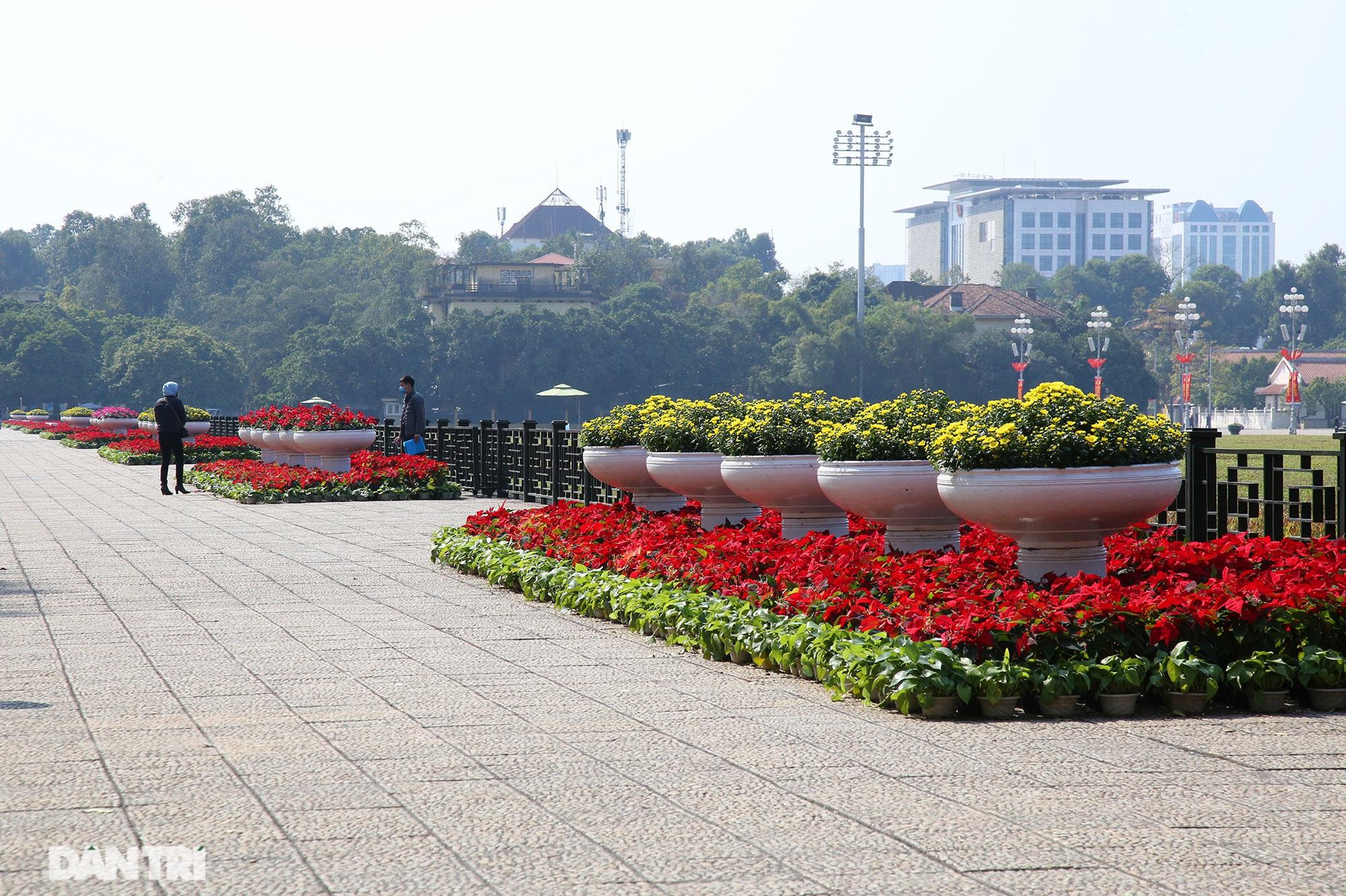 Hồ Gươm trang trí hoa rực rỡ sắc màu chào mừng Đại hội XIII của Đảng - 10