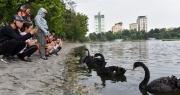 Bí thư Hà Nội đề nghị tổ chức phố đi bộ quanh hồ Thiền Quang