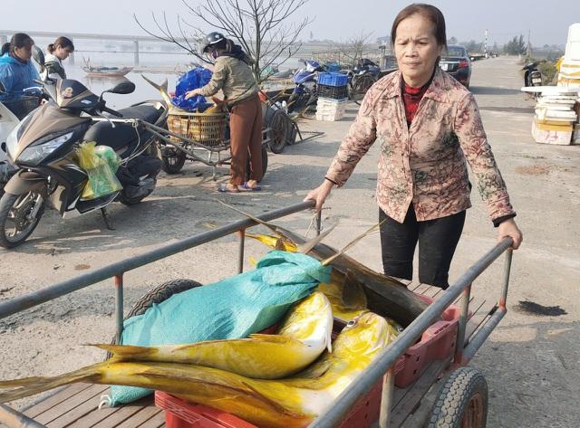 Trúng mẻ vàng cuối năm, mỗi ngư dân thu hơn 40 triệu đồng sau một đêm - 2