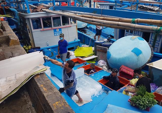 Khánh Hòa: Ngư dân bỏ Tết vươn Trường Sa, bám vụ cá ngừ đại dương - 1