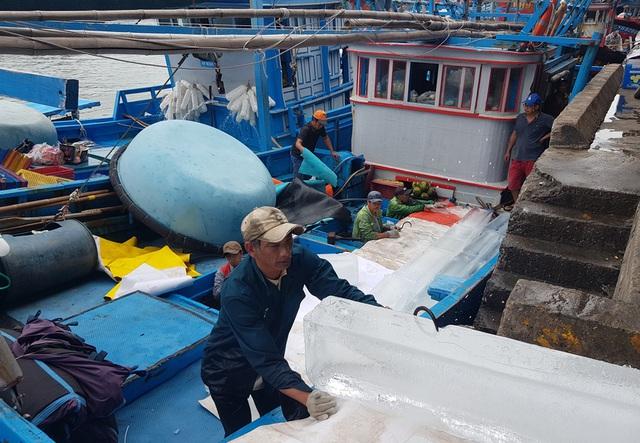 Khánh Hòa: Ngư dân bỏ Tết vươn Trường Sa, bám vụ cá ngừ đại dương - 4