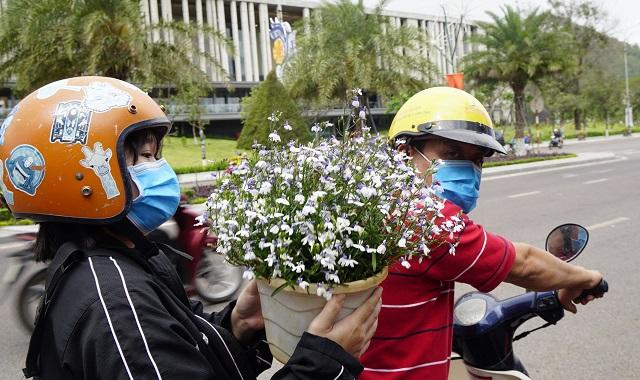 Ế hoa Tết, dân buôn thà đập chậu bỏ chứ không bán tháo - 8