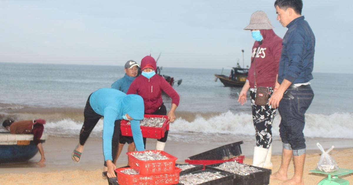 """Ngư dân bãi ngang vui mừng trúng """"lộc biển"""" những ngày đầu năm mới"""