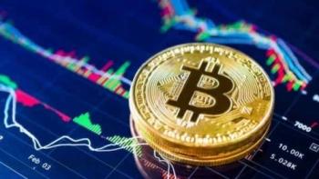 "Các ""cá voi"" tăng cường tích lũy Bitcoin"