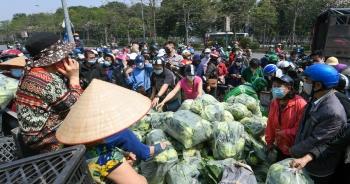 """Người Hà Nội giải cứu nông sản: """"Thương lắm, sốt ruột lắm nên phải ủng hộ"""""""