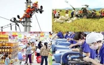 Thực hiện tổng điều tra kinh tế cả nước năm 2021