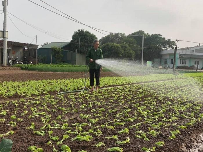 Bắt mạch yếu điểm ngành nông nghiệp Thủ đô