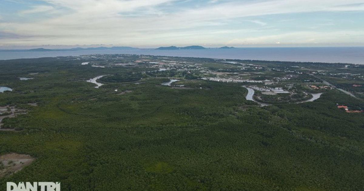 Chủ tịch TP HCM: Cần Giờ sẽ là thành phố nghỉ dưỡng, du lịch sinh thái