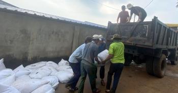"""Tiêu hủy gần 480 tấn hải sản tồn kho """"mắc kẹt"""" sau sự cố Formosa"""