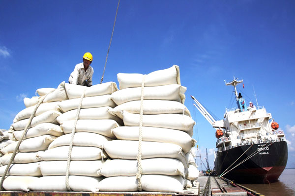 Bộ Công Thương khẩn cấp kiểm tra xuất nhập khẩu gạo